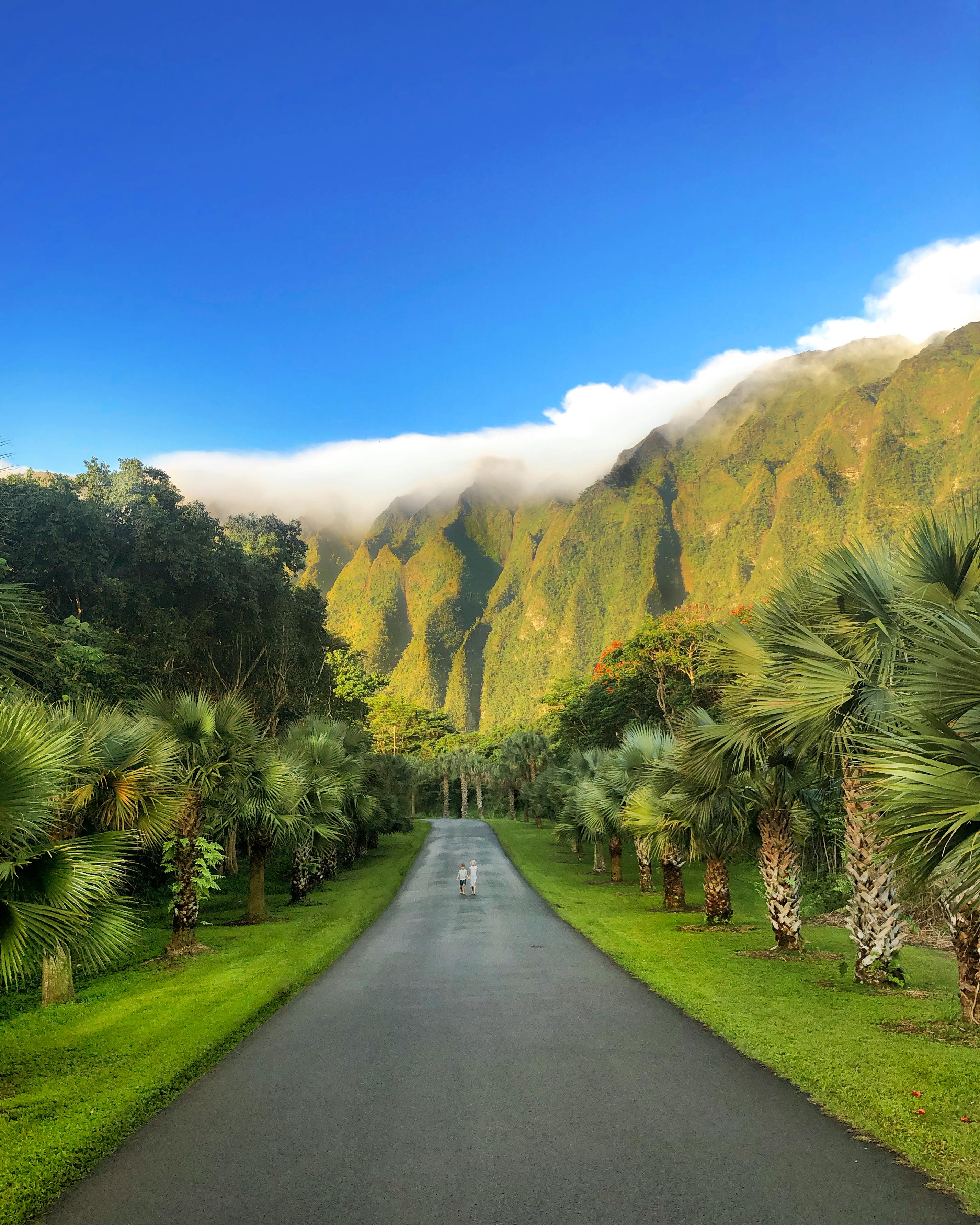 Hoʻomaluhia