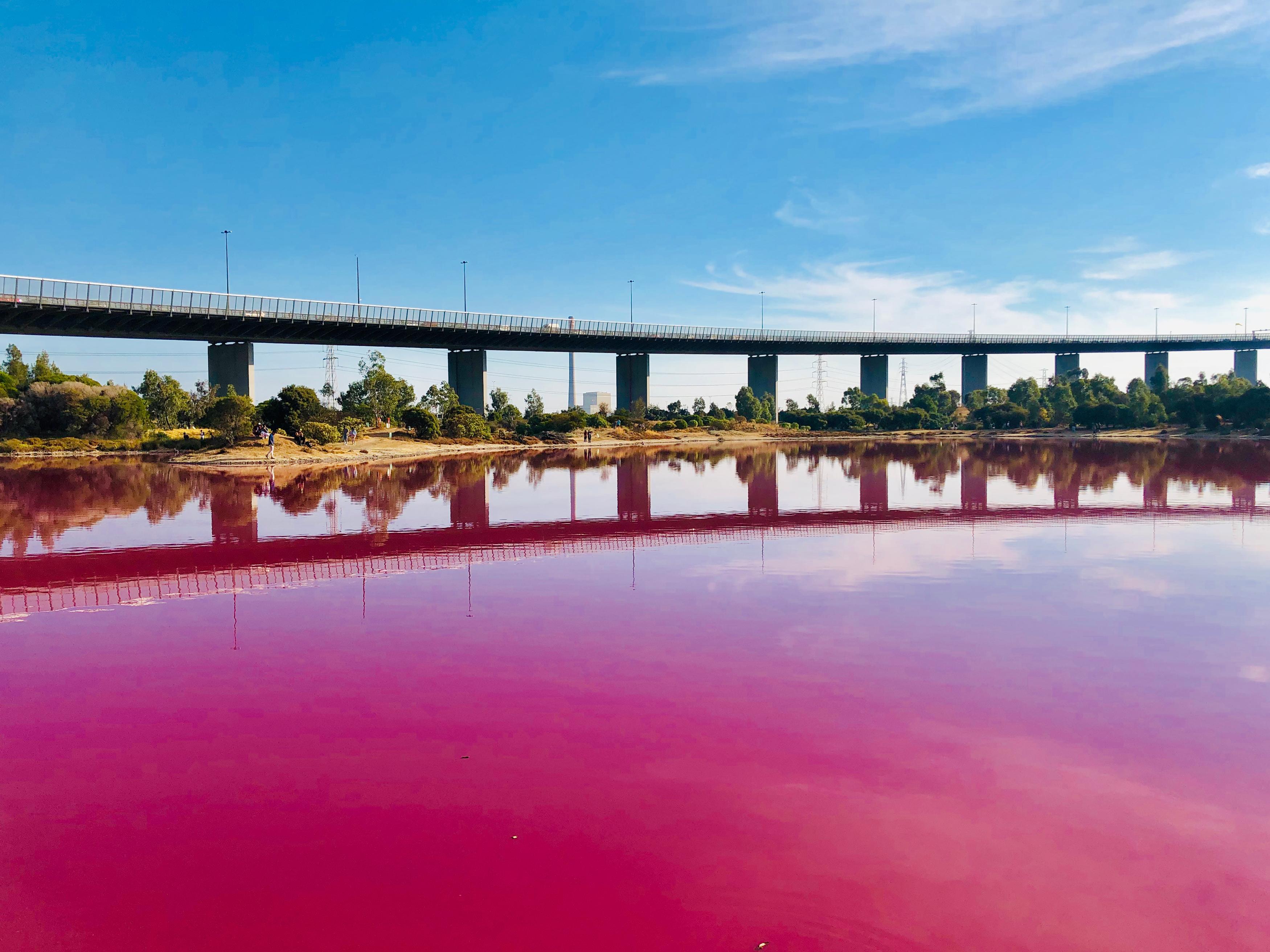 Pink lake.